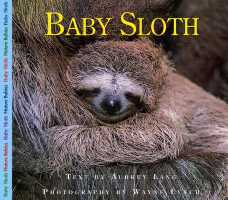 Baby Sloth By Lang, Aubrey/ Lynch, Wayne (ILT)